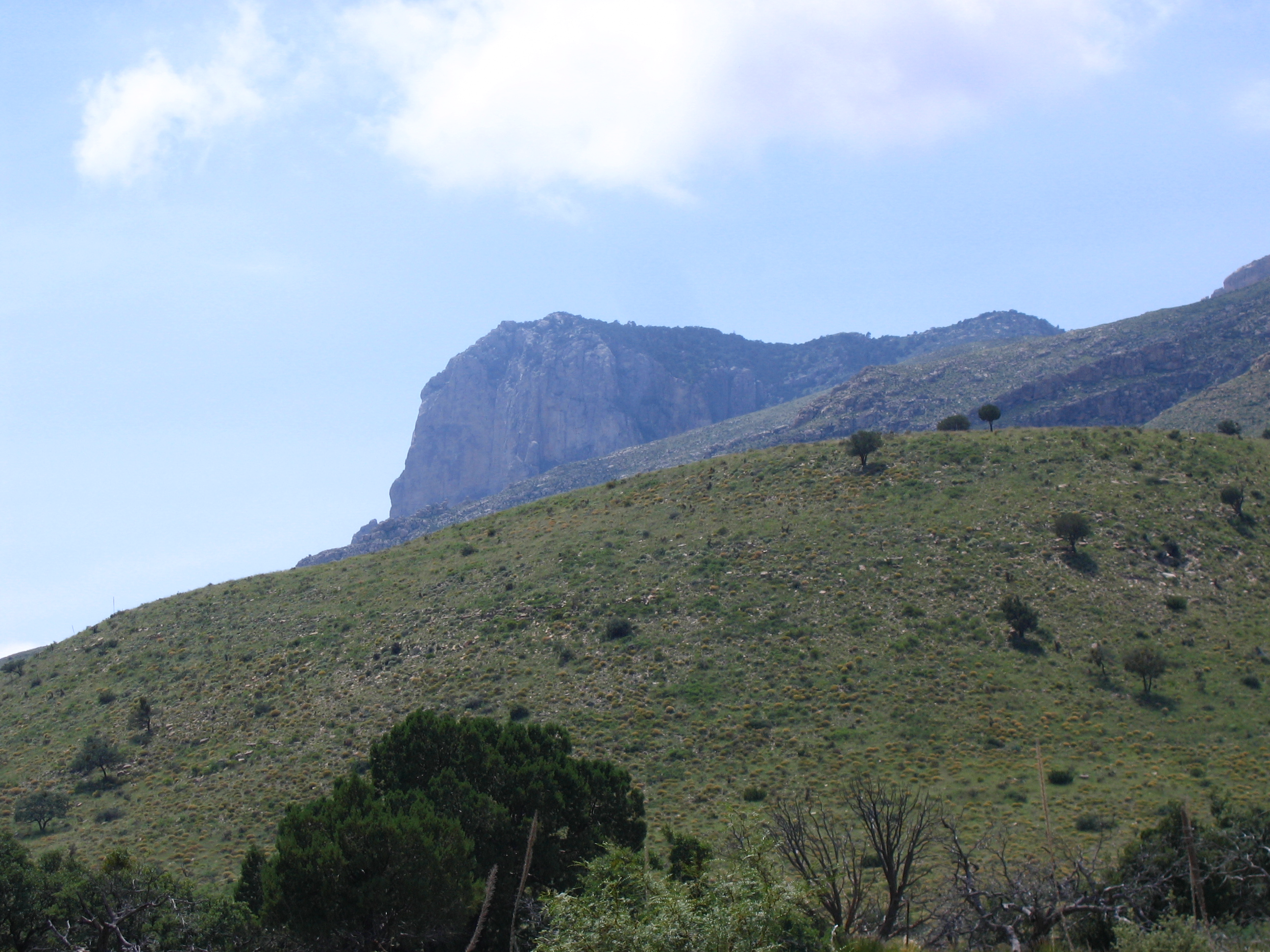 IMG_3471.jpg - Guadalupe National Park